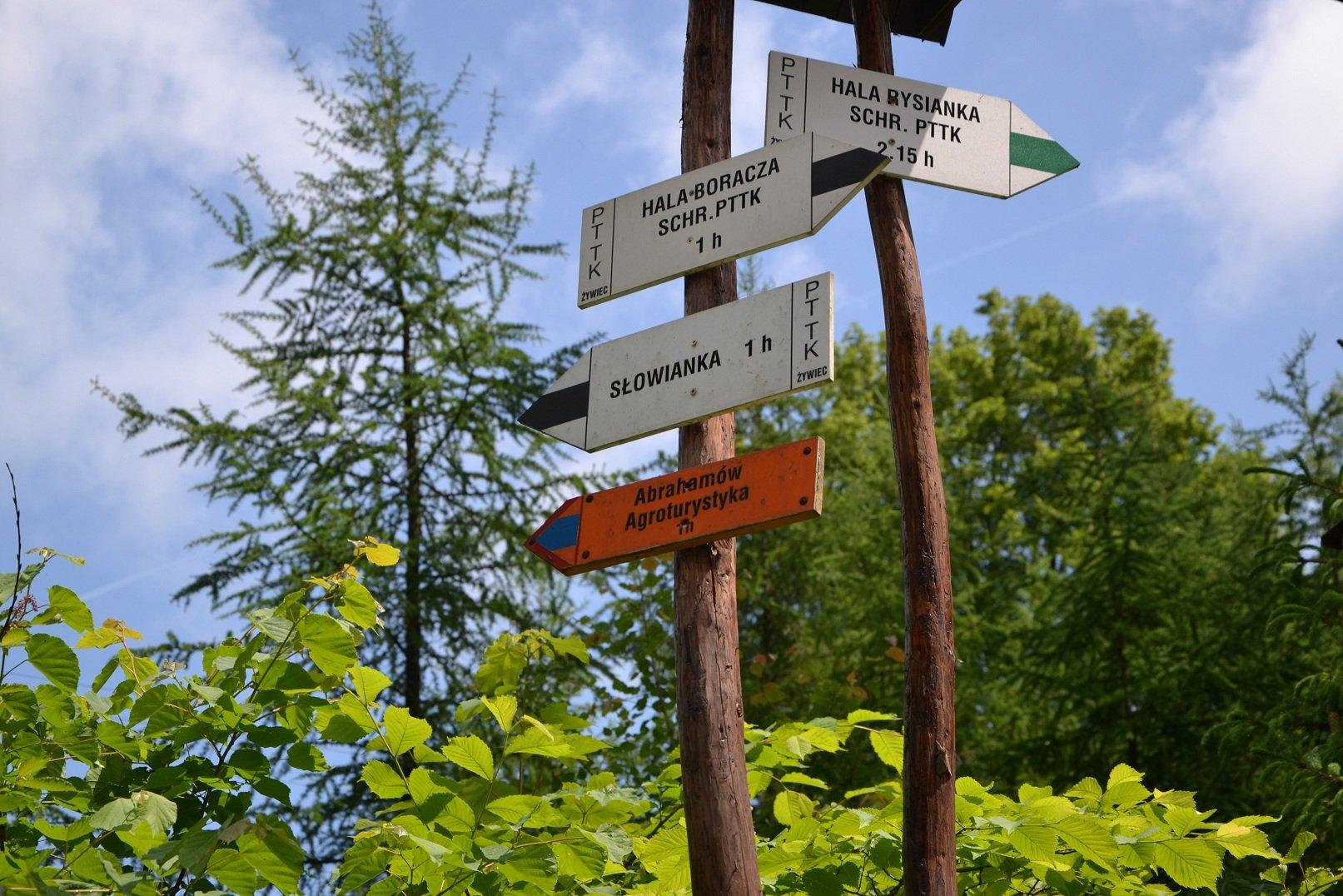 Szlak turystyczny - Żabnica Skałka - Hala Boracza